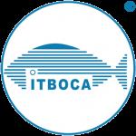 Escudo_ITBOCA_2011